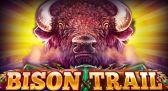 Bison Trail slot machine by Platipus gaming!